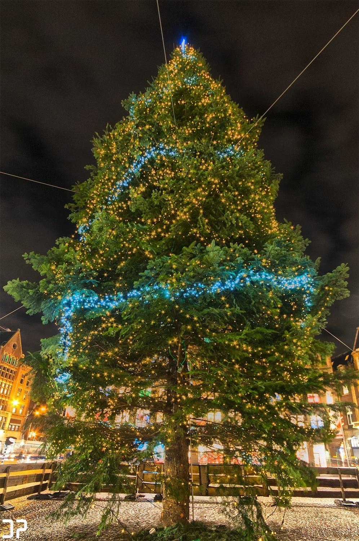 Kerstboom op de Dam